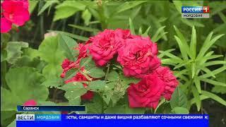 К Чемпионату мира жильцы одного из домов по улице Металлургов обновили зелёный дизайн своего двора