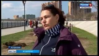 На Набережной Приволжского затона открыли 3-ю очередь Аллеи семьи