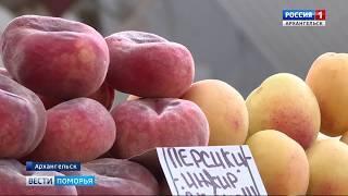 В Поморье открыт сезон клубники и черешни