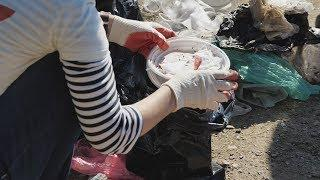 UTV. Во Всемирном дне чистоты приняли участие несколько тысяч уфимцев