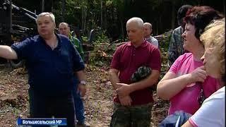На заседании экспертной группы обсудили проблемы лесовосстановления в регионе