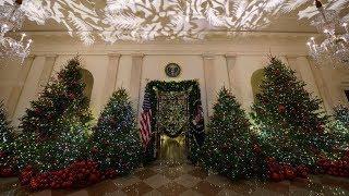 Рождественские огни: как выбрать елку и украсить дом к главному католическому празднику