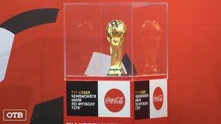 Футбол без границ: в Екатеринбурге состоялся матч равных возможностей