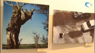 В Музее художественной культуры открылась Персональная выставка фотохудожника Александра Орлова