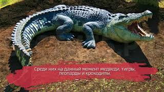 В Госдуму внесён законопроект, запрещающий держать дома диких животных