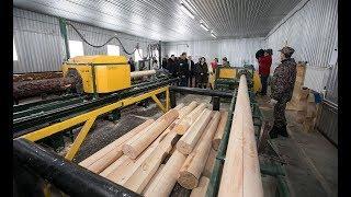 Наталья Комарова посетила лесопромышленное предприятие в Унъюгане