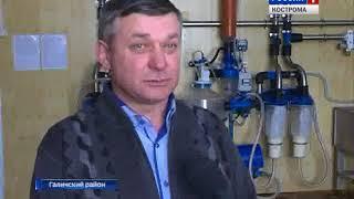 Костромские сельхозпредприятия активно осваивают средства областных грантов