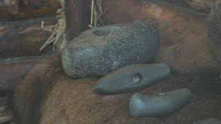 Житель Мордовии передал в музей топор эпохи бронзы