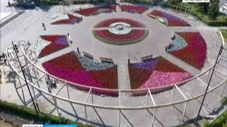 На площади Революции развернулись масштабные работы по благоустройству