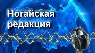 "Радиопрограмма ""Летняя неделя зиму прокормит"" 24.08.18"