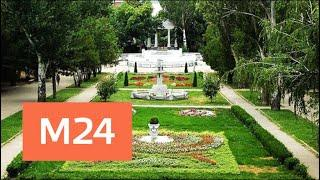 Парки Москвы объединили в ассоциацию - Москва 24
