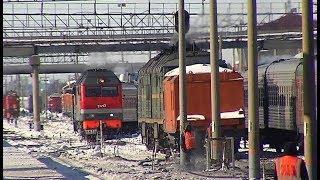 В Сургуте поздравили ветеранов РЖД