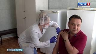 Клещи атакуют: Пора ставить прививку