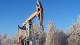 Югра привлекает инвесторов нефтью и лесом