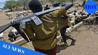 Herdsmen attacks: Police confirm 86 deaths, 6 injured in Plateau - Daily Post Nigeria