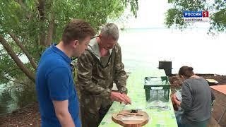 Костромские археологи обнаружили на острове Вежи уникальные находки