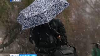 В Калининграде ожидается снег