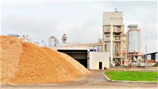 Безотходное производство: отходы деревообработки используют в Советском для производства плит