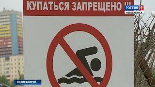 Новосибирцы продолжают купаться на диких пляжах, игнорируя запреты