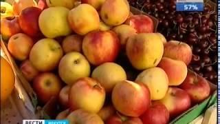Прямые поставки овощей и фруктов из Узбекистана хотят наладить в Иркутскую область