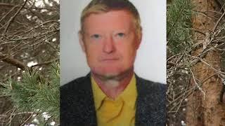 В Ярославской области ищут потерявшегося грибника