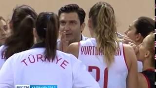 В Калининградской области появится женская команда по волейболу