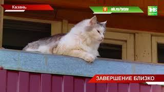 Капитальный ремонт домов прошёл экватор - ТНВ