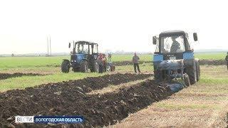 Лучших пахарей выбрали в Вологодской области