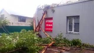 Упавшее дерево перекрыло проезд на Большой Садовой