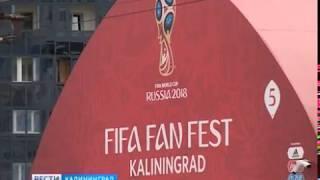Фан-зону в Калининграде откроют на следующей неделе