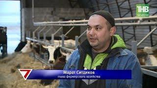 В Бугульминском районе в ближайшие три года построят три мегафермы. 7 дней | ТНВ