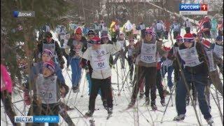 В субботу в Марий Эл пройдут массовые гонки «Лыжня России» - Вести Марий Эл