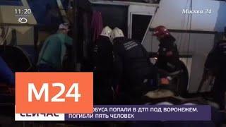 Два автобуса попали в ДТП под Воронежем - Москва 24