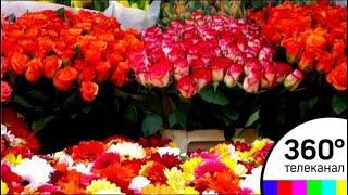 50 миллионов цветов привезли к празднику в одну только Москву