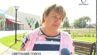 Почти 2 миллиона растений украсят Белгород в 2018-м