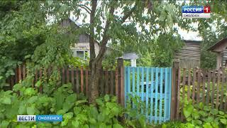 Смоленские полицейские задержали дачного вора