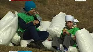 Прямое включение: в Красноярске проходит общегородской субботник