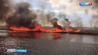 Пожароопасный сезон сегодня стал главной темой брифинга в правительстве области