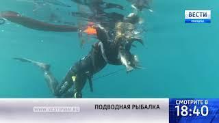 """Подводные охотники """"подстрелили"""" уникальную рыбу на юге Приморья"""