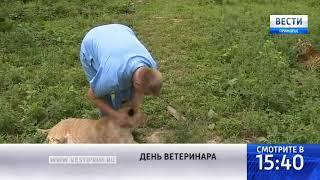 «Вести: Приморье»: Призвание ветеринар