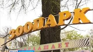 В Калининградском зоопарке потренировались в ловле сбежавшего тигра