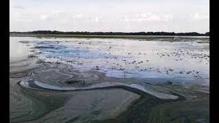 Новости Украины Киев открывает Северо-Крымский канал, чтобы отравить Крым