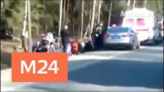 Смертельное ДТП произошло в Пушкинском районе Подмосковья - Москва 24