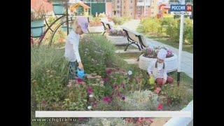 В Чебоксарах выбрали самые благоустроенные детские сады