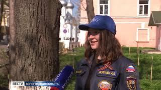 Вологда присоединилась ко Всероссийской акции «День посадки леса»