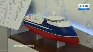 На Улице Дальнего Востока можно увидеть разработку уникального судна. 1