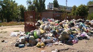 Север Волгограда тонет в бытовом мусоре