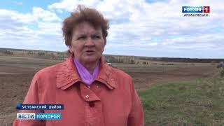 Агроному - Людмиле Попцовой присвоено звание «Заслуженный работник сельского хозяйства»