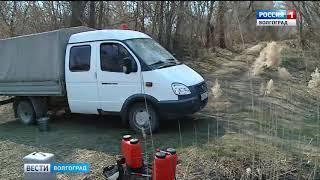 В Волгограде коммунальщики под контролем МЧС проводят контрольные поджоги сухостоя