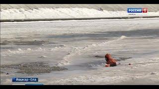 Марийские спасатели на личном примере показали, что выход на лёд опасен для жизни - Вести Марий Эл